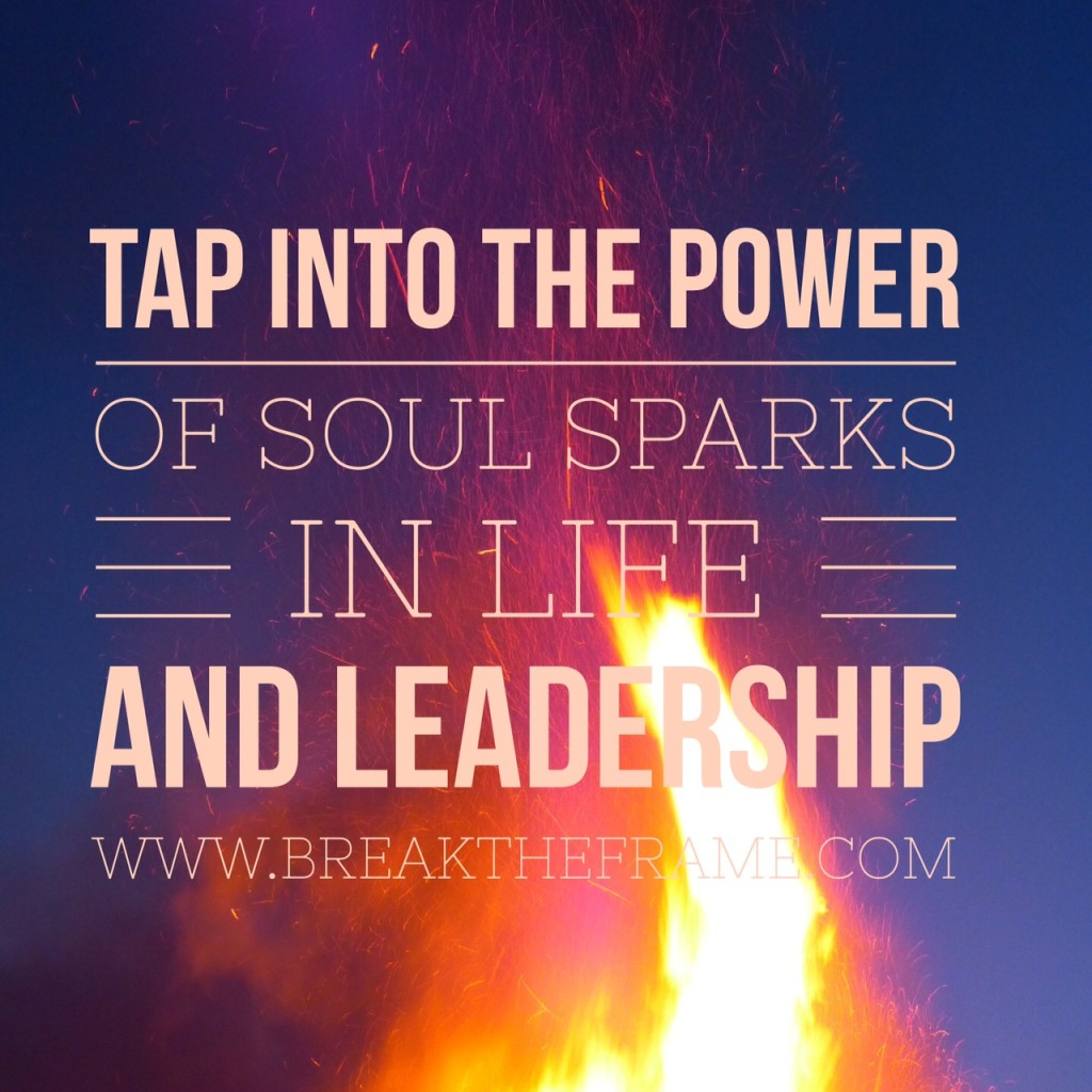 Soul Sparks Activate Leadership